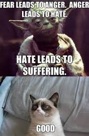yoda grumpy
